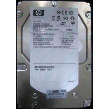 HP 454228-001 146Gb 15k SAS HDD (Дедовск)
