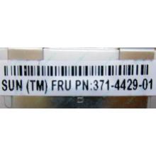 Серверная память SUN (FRU PN 371-4429-01) 4096Mb (4Gb) DDR3 ECC в Дедовске, память для сервера SUN FRU P/N 371-4429-01 (Дедовск)