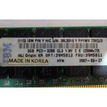IBM 39M5811 39M5812 2Gb (2048Mb) DDR2 ECC Reg memory (Дедовск)