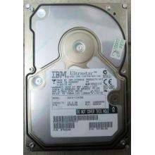 Жесткий диск 18.2Gb IBM Ultrastar DDYS-T18350 Ultra3 SCSI (Дедовск)